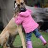 Mi vida, a través de los perros (LVII)