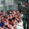 Rodeo 2011:Un Castigo Ejemplar Dirigido a la Resistencia