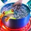 La rana que no brincaba del agua caliente