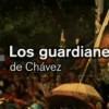Los Guardianes de Chávez:no es parte del remedio sino de la enfermedad