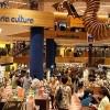 Prix Jeunesse Iberoamericano 2011:Reseña del Festival de los locos bajitos(Segundo Capítulo)