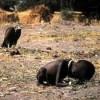 La pobreza, historia y soluciones